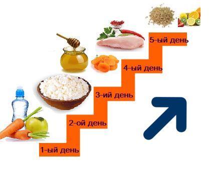 диета лесенка схема