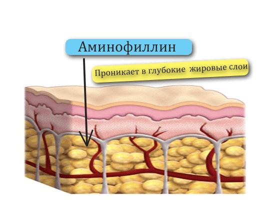 аминофиллин польза