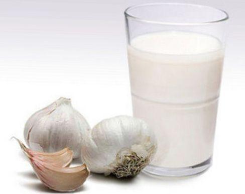 очищение организма чесноком с молоком