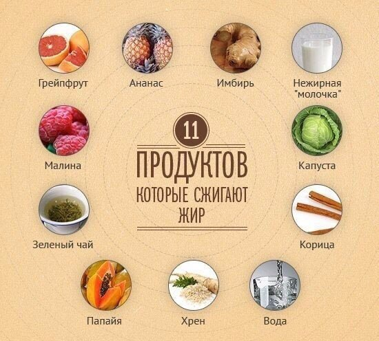 жиросжигающие продукты для диеты