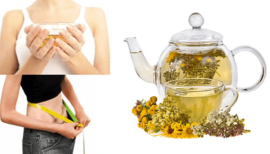 сбор монастырского чая для похудения